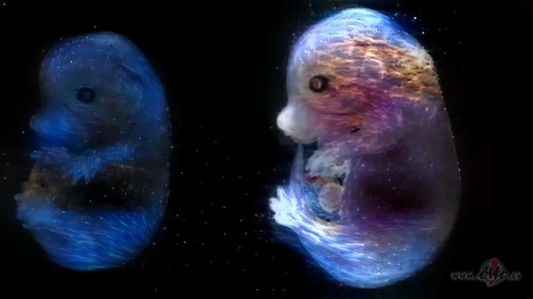 Citplanētieši ir...
